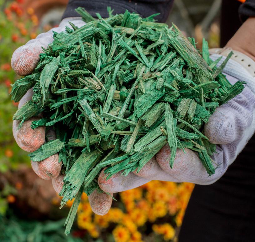 Mulci Verde - 3 saci de 20L