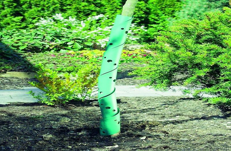 Protecție spiralată pentru pomi